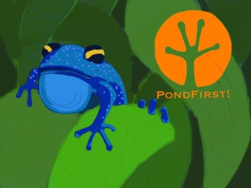 Pond First