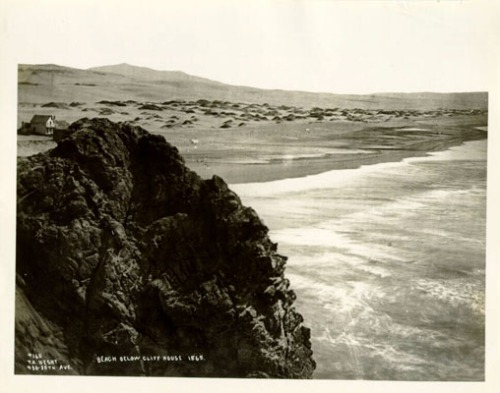 Ocean Beach and san dunes