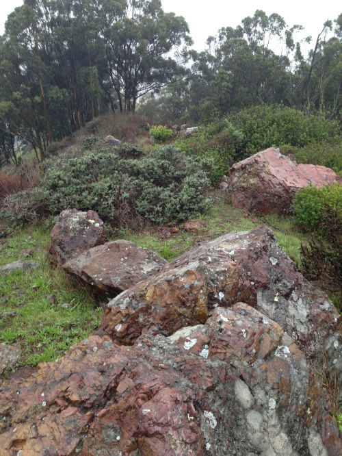 Rocks underfoot on Candlestick Hill